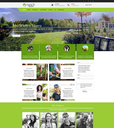 Tc_theme39_package theme